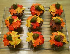 These I made in the fall of for our church picnic. I wanted to do some fondant decorations before my daughter's first birthday--and I. Donut Decorations, Fondant Decorations, Dessert Decoration, Fall Wedding Cupcakes, Thanksgiving Cupcakes, Thanksgiving Ideas, Fall First Birthday, Cupcake Display, Specialty Cakes