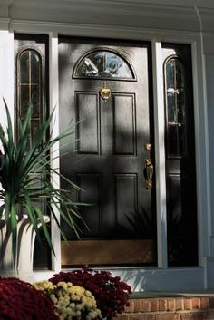 Mold and mildew is the enemy. It's dirty and if a person breathes the mold or mildew they can develop lung problems. Exterior doors are usually the last places people look. Black Front Doors, Wood Front Doors, Painted Front Doors, Exterior Doors With Sidelights, Wood Exterior Door, Exterior Paint, Cleaning Mold, Cleaning Tips, Door Molding