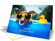 Invitation To A Pool Party/Puppy with sunglasses and a duck card