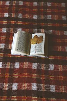 Quando abro a cada manhã a janela do meu quarto  É como se abrisse o mesmo livro  Numa página nova...