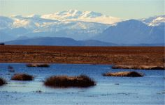 Reserva Natural de Las Lagunas Puebla de Beleña, Guadalajara