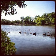 pond lake arvada colorado image - Google Search