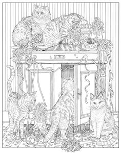 inkijkexemplaar franciens kattenkleurboek francien van westering adult coloring pagescoloring