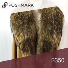 An AMAZING Vintage Fur Collar This is truly see most magnificent fur collar I have ever seen. It is glossy and healthy, and oh so beautiful. No flaws. Coat is for demonstrating purpose only. Camel 🐪 Hair Coat is for sale in my closet. Thanks for not making a lowball offer or asking to trade. Vintage Accessories Scarves & Wraps