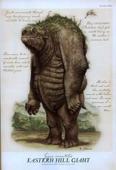 GIANT I think I've seen this guy pass my trail . or at least my horse thinks he/she has . Eastern Hill Giant, by Tony DiTerlizzi Fantasy Kunst, Fantasy Art, Spiderwick, Creature Concept, Mythological Creatures, Field Guide, Magical Creatures, Creature Design, Fantasy World
