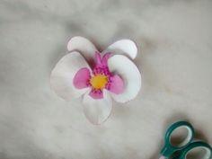 Flor orquidea