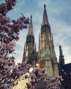 Kościół wotywny. Świątynia upamiętnia cudowne ocalenie cesarza Franciszka Józefa I z zamachu którego usiłował dokonać anarchista Libeny.  #kościół #wotywny #österreich #austria #wienna #Vienna #Vyana  #Bec #viden #Wien #Vieno #Vienne #viena #Viena #Vindobona #vieden  #Dunaj #viyana #wiedeń #votivkirche #ring