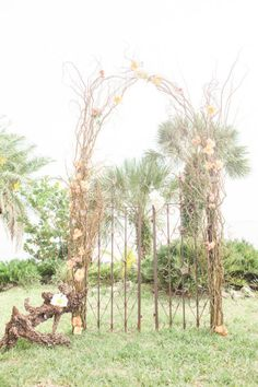 ceremony arch with a tropical flair  Photography by 1313 Photography / 1313blog.com/, Event Planner by Day Planners / dayplanners.us,  Floral Design by Fishhawk Weddings / fhweddings.com/