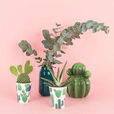 """""""Le monde entier est un cactus"""", aie, aie, aie! #cactus #mylittleday #dailydoseoffiesta"""