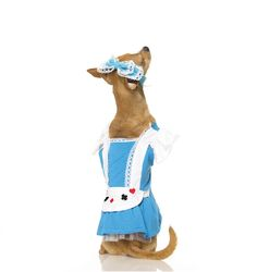 Alice Dog 2pc Pet Costume #dogs in halloween costumes #alice in wonderland dog costume #alice wonderland costume