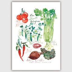 Plantes potagères Large Veggie print 11X14 13X17 von lucileskitchen