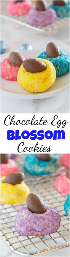 Mini Chocolate Egg Blossom Cookies - get ready for Easter with these fun blossom cookies! Sugar cookie blossoms rolled in colored sugar and then topped with a chocolate egg! Reese Dessert Recipe, Iced Sugar Cookie Recipe, Iced Sugar Cookies, Easy Cookie Recipes, Best Dessert Recipes, Easter Recipes, Fun Desserts, Baking Recipes, Holiday Recipes