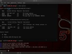 Hack Like a Pro: How to Remotely Install an Auto-Reconnecting Persistent Back Door on Someone's PC « Null Byte