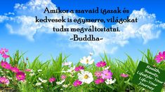 #boldogsag #beke #legykedves #healthbeautylifestyleyourlifeyourjourney #onszeretet #szabadelet #buddha #