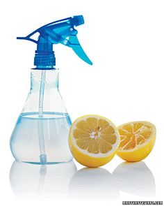 natural weed killer --> vinegar, lemon juice or boiling water