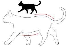 Marvelous Drawing Animals In The Zoo Ideas. Inconceivable Drawing Animals In The Zoo Ideas. Cat Profile, Profile Drawing, Cat Drawing, Drawing Techniques, Drawing Tips, Cat Santa Hat, Curious Creatures, In The Zoo, Buy A Cat