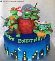 Teenage Mutant Ninja Turtles Cake. Crafted by Paaliz Cake Art Bangalore.   Contact us for custom designed exclusive cakes for your special occasions. Contact details available on our Facebook page.
