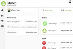 Litmos LMS Review - PC Mag Looks promising