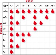 Interesting blood type information