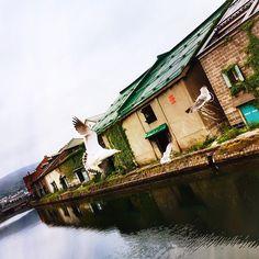 From Hokkaido Otaru : www.pajama-days.com #Japan #Otaru #Asia #love #art #street #city #colorful #monocrome #beautiful #design #creative #hipstamatic #vivid #music #fashion #mode #travel #traveller #travelgram #siluet #sunset #afternoon #nightview #neon #sign #bird #freedom #people #happy