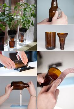Plants Holder Watering System Thing Out Of Bottles