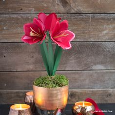 Make your own simple yet stunning amaryllis paper flower with this design, template and tutorial by handcrafted lifestyle expert Lia Griffith.