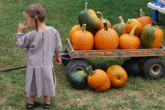 AMISH DISCOVERIES: Amish and Pumpkins # 5