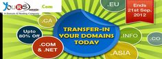 Web Hosting and Domain name