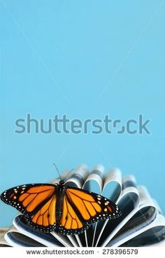 Butterfly School Stock Photos, Images, & Pictures | Shutterstock