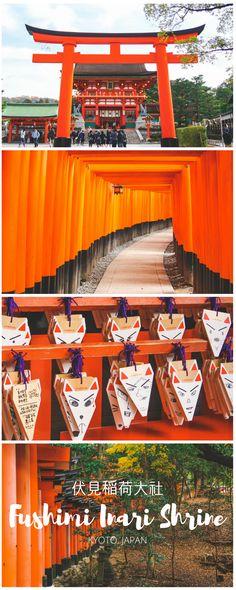 Kyoto's #1 must-see attraction!! // littleislandtakara.com