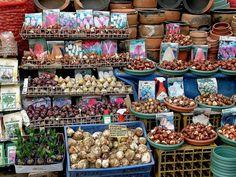 071020156f Istanbul - Eminönü - Çiçekpazarı | Flickr - Photo Sharing!
