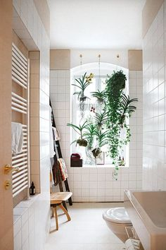 "Home ""Alone"": Small Space Hacks for Creating Privacy At Home. Love the plants hanging and creqting privacy by the window"