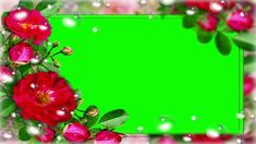 Green Screen Video Backgrounds, Hd Backgrounds, Frame Download, Download Video, Sound Files, Font Art, Chroma Key, Video Effects, Wedding Frames