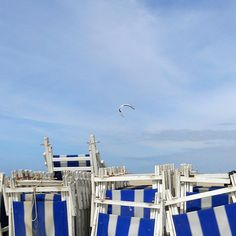 Beach chairs at Scheveningen beach