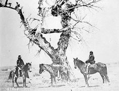 Tree burial of the Oglala Sioux near Fort Laramie, Wyoming.
