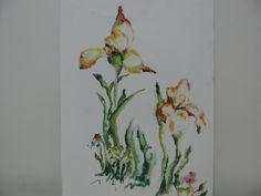 desenho/pastel24