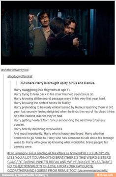 So sad because this would have been perfect and amazing but no it didn't happen :( because Harry got stuck with the Dursleys and Sirius got sent to Azkaban :(