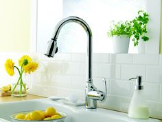 Anu Single Handle Pull-Down Kitchen Faucet by Danze.com