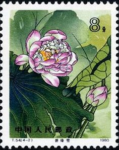 Lotus, 1980 China stamps and covers Chinese Prints, Lotus Painting, Postage Stamp Art, Stamp Printing, Flower Stamp, Small Art, Stamp Collecting, Vintage Postcards, China