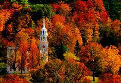 A whopping 75% of Vermont is covered with forests, making it one of the most beautiful places to take in autumn's foliage offerings — and the very best place, according to their Governor. - HouseBeautiful.com