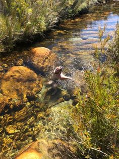Hiking in Kromrivier Cederberg Park & Stadsaal ~ by Allison Foat - Cape Town Diva Boulder Rock, Astronomical Observatory, Rock Pools, Art Sites, Place Of Worship, Day Hike, Nature Reserve, Gaudi, Caves