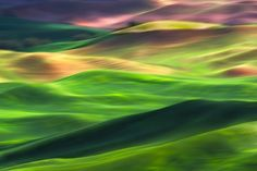 Palouse 2 by Ursula Abresch
