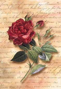 Red on vintage letter Decoupage Vintage, Decoupage Paper, Vintage Labels, Vintage Cards, Vintage Paper, Vintage Pictures, Vintage Images, Vintage Prints, Flower Prints