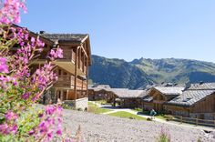 Paysage de montagne l'été, chalet et fleurs de montagne.