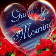 Good Morning Flowers Quotes, Good Morning Love Gif, Good Morning Beautiful Pictures, Good Morning Roses, Good Night Love Images, Good Morning Image Quotes, Good Morning Beautiful Quotes, Good Morning Beautiful Images, Good Morning Photos