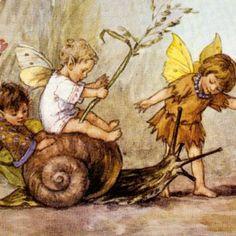 Cecily Mary Barker's flower fairies