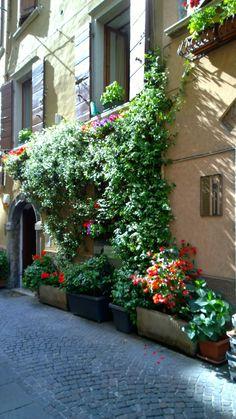 Streetview at Salò, Lake Garda #salo #lagodigarda