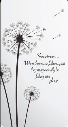 """Quote: Sometimes when things are falling apart. - """"Sometimes when things are falling apart they may actually be falling into place. Words Quotes, Me Quotes, Motivational Quotes, Peace Quotes, Friend Quotes, Dandelion Quotes, Dandelion Tattoo Meaning, Dandelion Tattoo Design, Sunflower Quotes"""