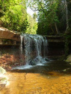 Cannings Falls: A Hidden Gem Near Orangeville, Ontario, Canada