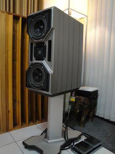 Картинки по запросу Wilson Audio Cub Pro Audio Speakers, Audiophile Speakers, Monitor Speakers, High End Hifi, High End Audio, Hi End, Top Drawer, Loudspeaker, Audio System